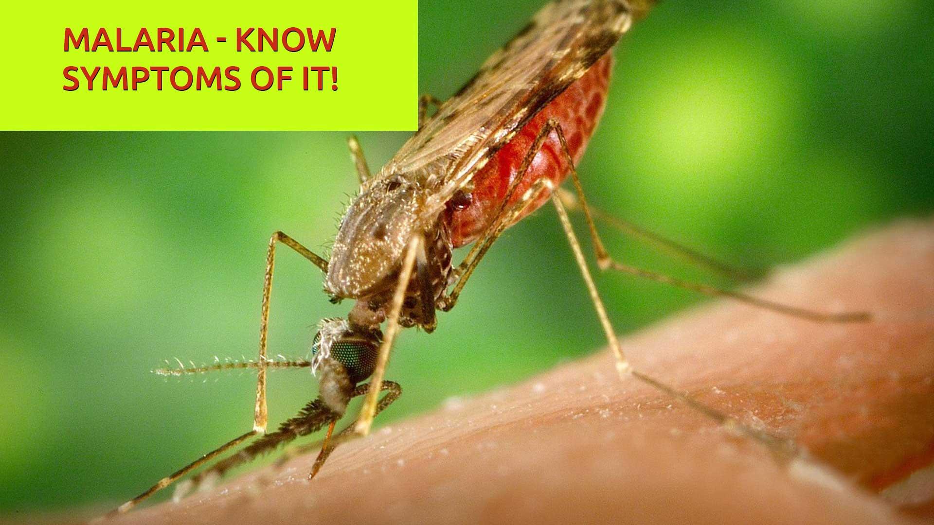 Malaria – Know symptoms of it!